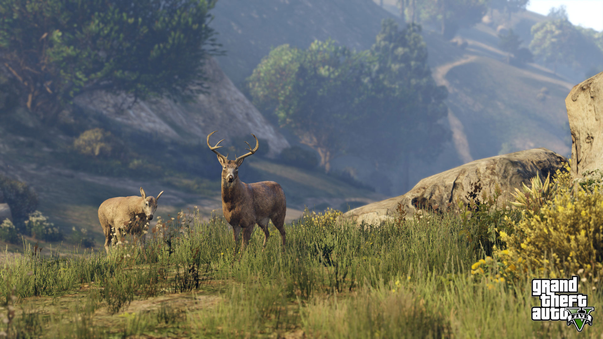 Map grand theft auto v - The Diverse Map Includes Massive Stretches Of Countryside