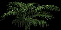 Mgtxd palm dxt4.png