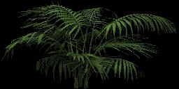 Mgtxd palm dxt1.png